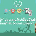 pic-petdy01.png